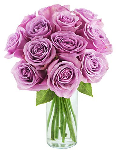 Bouquet of 12 Fresh Cut Purple Roses with Vase - by KaBloom (Birthday Gift Bouquets)