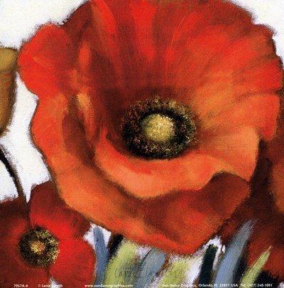 Poppy Splendor Square I (Closeup) by Lanie Loreth - 6x6 Inches - Art Print Poster