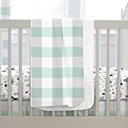Carousel Designs Mint and Gray Buffalo Check Crib Blanket