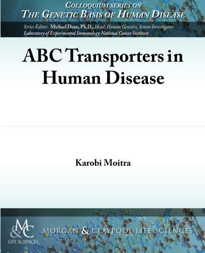Abc Transporter - 9