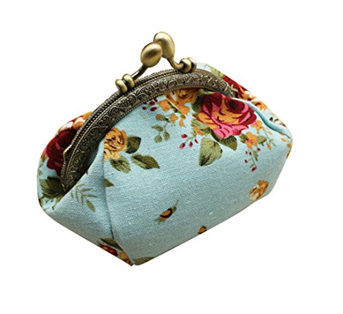HeySun Girls Floral Slim Wallet Kiss-Lock Change Pocket Casual Coin Purse for Ladies (Aqua)