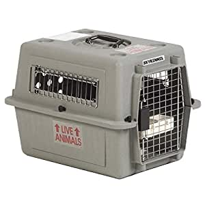 Petmate Sky Kennel for Pets Up to 15-Pound, Light Gray