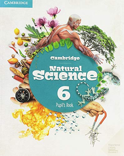 Cambridge Natural Science Level 6 Pupil's Book (Natural Science Primary) por Cambridge University Press