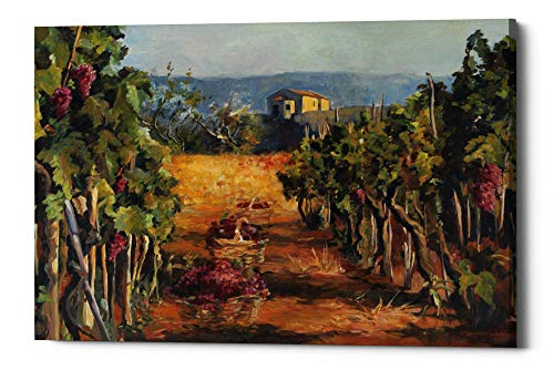 "Epic Graffiti Rhone Valley Vineyard by Marilyn Hageman Giclee Canvas Wall Art 18"" x 26"" Green"