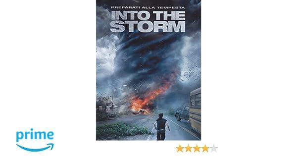 Into the Storm [Italia] [DVD]: Amazon.es: vari: Cine y Series TV