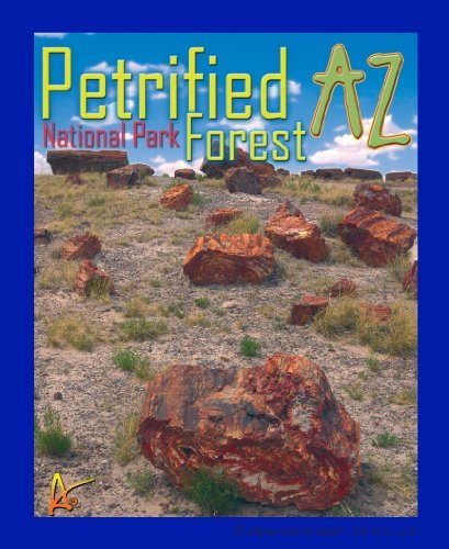 National Monument Postcard (Best Ultimate IronOn Petrified Forest Travel Collectable Souvenir Patch - National Parks & Monuments Souvenir Postcard Type Quality Photos Graphics - Petrified Forest)