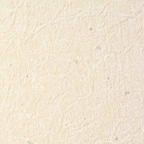 のりなし 壁紙 切り売り (販売単位1m) SSLP-393