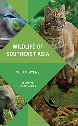 Looking for a wildlife of southeast asia? Have a look at this 2019 guide!