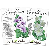 Moonflower Duo, Lavender & White Moonflower Seeds (Ipomoea alba / turbinata) Open Pollinated Seeds by Seed Needs