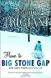 Home to Big Stone Gap: A Novel