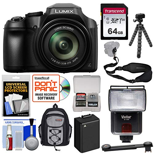 (Panasonic Lumix DC-FZ80 4K Wi-Fi Digital Camera with 64GB Card + Backpack + Flash + Battery + Tripod + Strap + Kit)