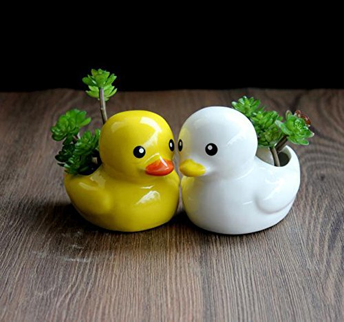 Duck Ashtray - 7