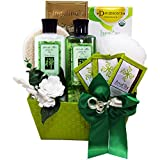 Best Art of Appreciation Gift Baskets Birthday Gifts For Grandmas - Tranquil Delights Spa Bath and Body Gift Basket Review