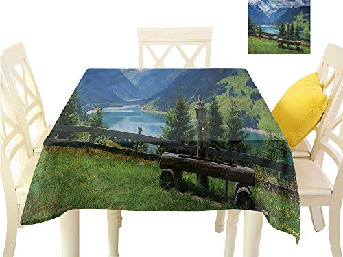 (WilliamsDecor Non Slip Tablecloth Nature,Clear Open Sky Sun Valley Dining Table Cover W 54