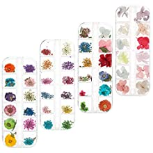 DaveandAthena 144 Pieces Nail Dried Flowers Natural Art Real Dried Flowers Set Nail Applique 3D Nail Art Accessory for Nail Decor