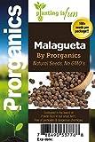 100 Organic Sweet Pepper, Malagueta Pepper Seeds by Prorganics