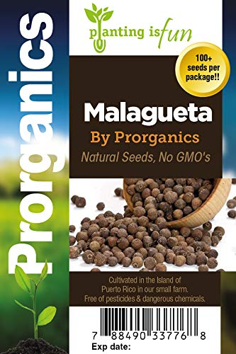 100 Organic Sweet Pepper, Malagueta Pepper Seeds by Prorganics