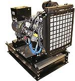 Winco DE30I4 Winpower Liquid cooled Diesel Generator
