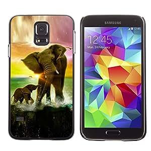 Smartphone Rígido Protección única Imagen Carcasa Funda Tapa Skin Case Para Samsung Galaxy S5 SM-G900 Elephant Sunset Ocean Sun Summer Africa / STRONG