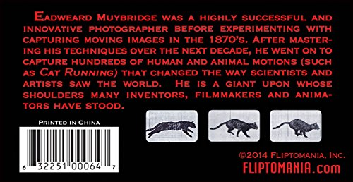 Fliptomania Muybridge Cat Flipbook - http://coolthings.us