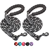 BAAPET 2 Packs 5 FT Strong Dog Leash with Comfortable Padded Handle and Highly Reflective Threads Dog Leashes for Medium and Large Dogs (Black+Black)