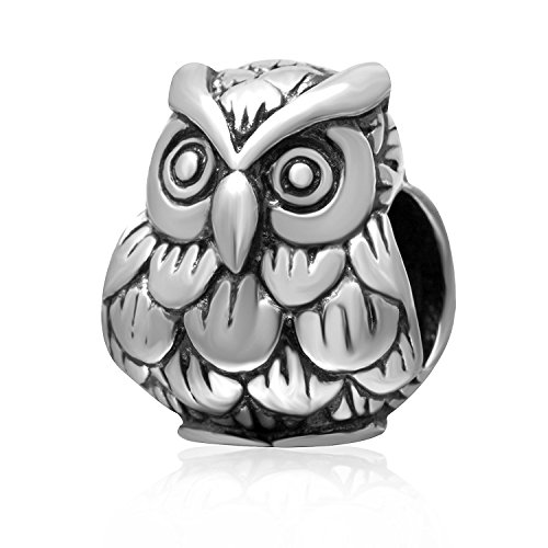 Silver Owl Beads (Lucky Baby Owl Charms 925 Sterling Silver Smart Animals Bead Charm)
