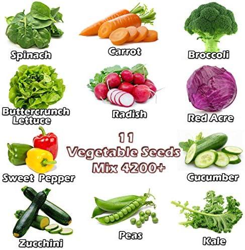 12500+ Organic Seeds Vegetable Fruit See- Buy Online in ...