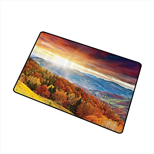 Non-Slip Door mat Scenery Decor Fairy Trees with Hazy Rays When Sunrise and Mystic Grungy Rain Clouds View W20 xL31 Easy to Clean Carpet Orange Yellow