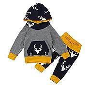 Exteren 2Pcs Newborn Infant Baby Boy Girl Deer Hoodie Tops+Pants Outfits Clothes Set (0-6 Months)