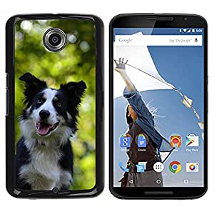 Hot Style Cell Phone PC Hard Case Cover // M00109294 Border Collie Portrait Attention Dog // LG Google Nexus 6