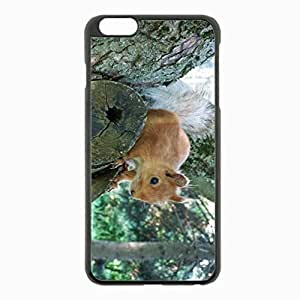 iPhone 6 Plus Black Hardshell Case 5.5inch - squirrel tree forest climb Desin Images Protector Back Cover