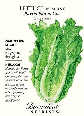 Parris Island Cos Lettuce Seeds - 2 grams