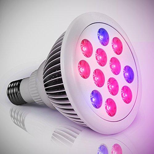 planet-homeware-led-grow-bulb-minimal-heat-rapid-growth-high-efficiency-indoor-red-blue-led-garden-g