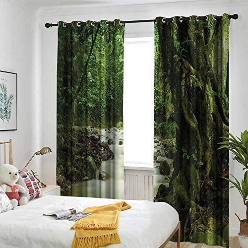 Rainforest Decorations Indoor/Outdoor Curtains Tropical Rainforest and Rocky River in Selangor State Malaysia Asian Wildlife Darkening Thermal Insulated Blackout 108