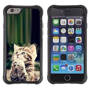 All-Round híbrido Heavy Duty de goma duro caso cubierta protectora Accesorio Generación-II BY RAYDREAMMM - Apple iPhone 6 PLUS 5.5 - Cute Praying Kitten God Christian Sweet