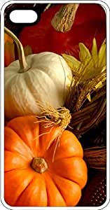Fall Harvest With Gourds & Pumpkins White Plastic Case for Apple iPhone 4 or iPhone 4s by Maris's Diary