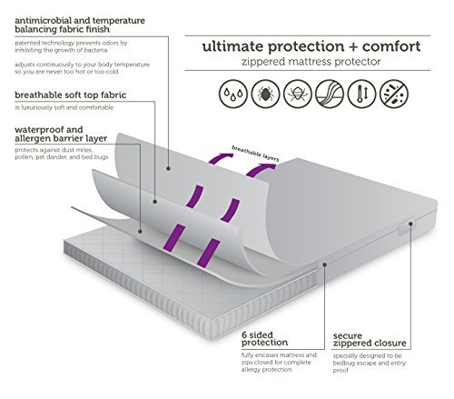 AllerEase Ultimate Protection and Mattress Protectors