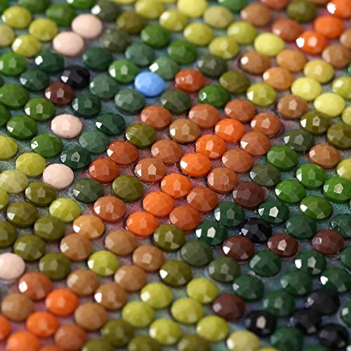40CM Gorri/ón y gallinas DIY Diamante 5D Pintura por Kits de n/úmeros Bordado de cristal Punto de cruz Mosaico Animal Dibujo Home Art Craft///Decoraci/ón de la pared30