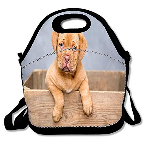 Dogue De Bordeaux Puppy Dogs Sweet Lunch Tote Bag Reusable Neoprene Cooler Portable Lunchbox Handbag for Men Women Adult Kids Boys Girls