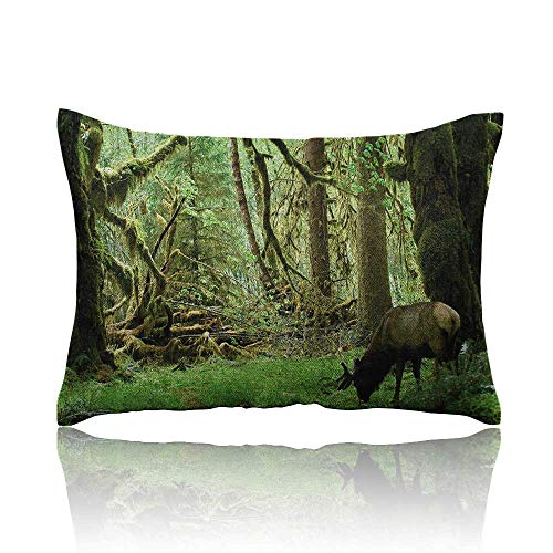 Anyangeight Rainforest Cars Pillowcase Roosevelt Elk in Rainforest Wildlife National Park Washington Antlers Theme Youth Pillowcase 20
