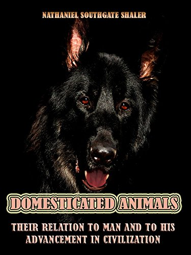 Domesticated Animals : Their Relation to Man and to his Advancement in Civilization (Illustrated) ()
