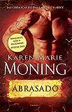 Abrasado (Spanish Edition)