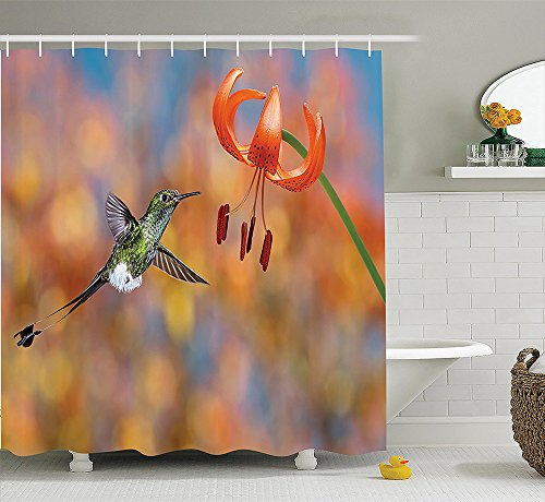 Hummingbirds Decorations Collection The Booted Racket-Tail Feeding Nectar from Tiger Lily Blur Background Photo Polyester Fabric Bathroom Shower Curtain Set with Hooks Orange ()