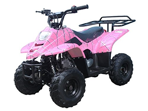 110cc ATV Four Wheelers Fully Automatic 4 Stroke Engine for sale  Delivered anywhere in USA