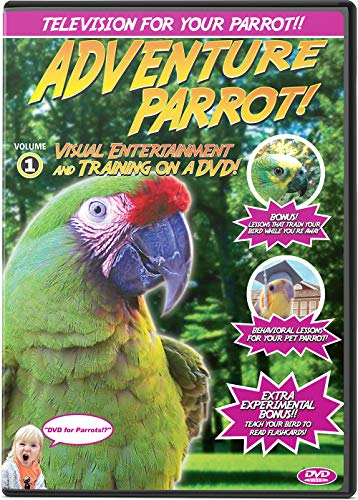 Top 5 Pbs Nature Dvd On Owls