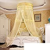 Round fly screen,Suspended princess wind nets european style hanging palace round conical design 1.5 meters 1.8m bed double netting curtains-D King