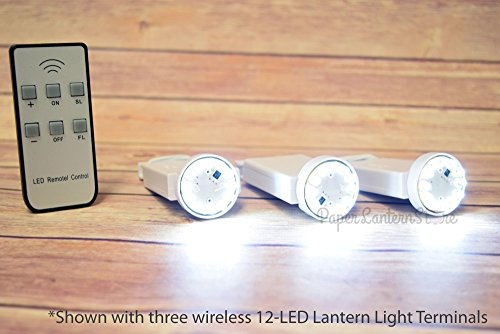 Remote Controlled Led Lantern - PaperLanternStore.com Bulk CASE 12 LED Multi-Function Remote Controlled Battery Powered Lights for Lanterns, Cool White (6 Pack + Remote Control)