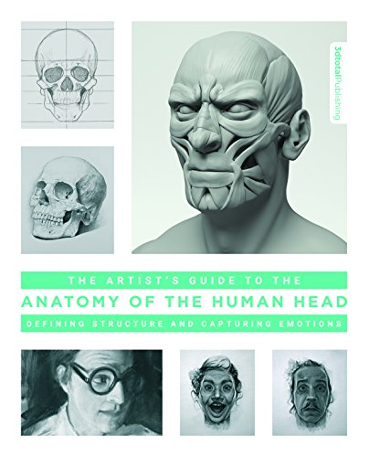 head drawing and anatomy - 5