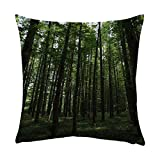 Anthra Pillow Protectors Dense woods 20x20 Inch Room Decoration One Sides printed hr85