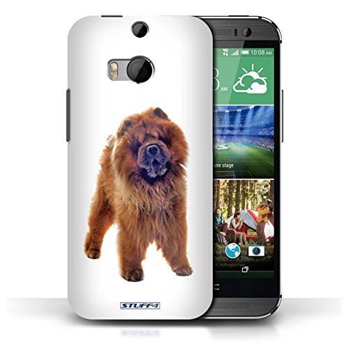 Etui / Coque pour HTC One/1 M8 / Chow Chow conception / Collection de Chiens